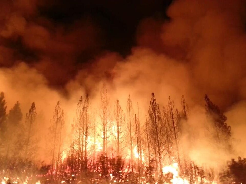 Ignited by a hunter's illegal campfire near the Rim of the World Vista in Stanislaus National Forest on Aug. 17, 2013, the Rim Fire ultimately burned for three months.