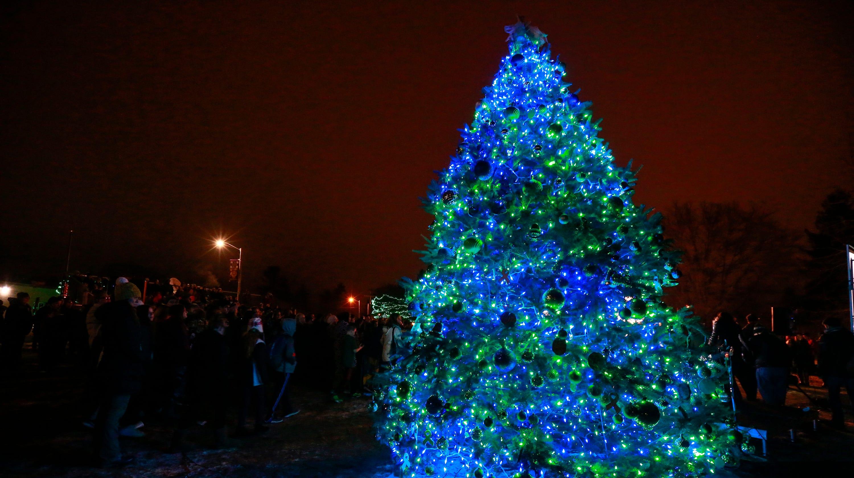 Christmas trees 2018: Uber, Lyft, Rabbit Transit holiday