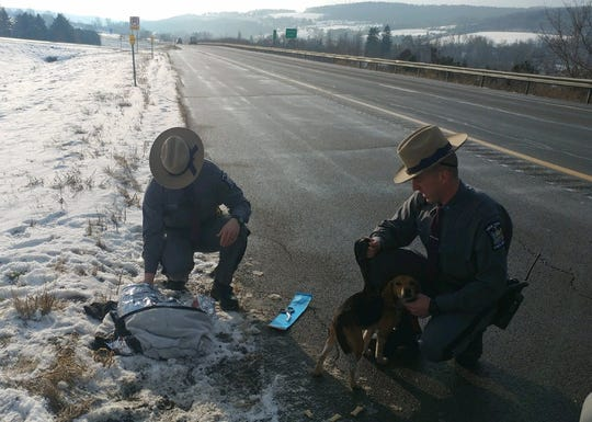New York State Police are looking for a suspect vehicle that allegedly threw two beagles out a window along Interstate 81 in Cortland County on Dec. 12.