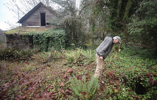 Jim Aho peers into a well on the old Avery homestead, which would be added to the Illahee Preserve property if volunteers can raise money to purchase it.