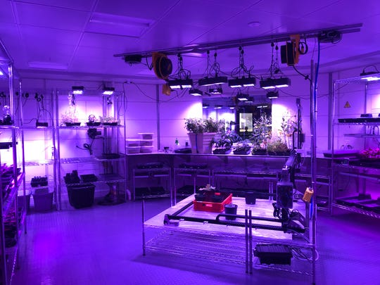 """At Kennedy Space Center Visitor Complex, guests can experience the Mars Base 1 attraction where they can harvest vegetables in the botany lab like in the film, """"The Martian."""""""
