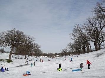 Sledding can never be a bad choice as long as there's a bit of snow available.