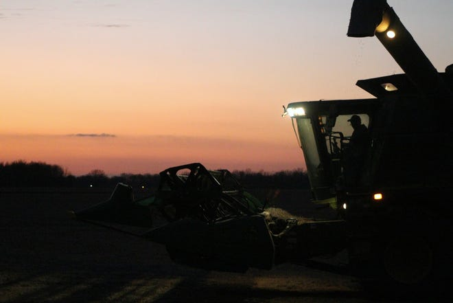 Roger Groll, who farms corn and soybeans outside Waldo, toils in his combine past sundown Wednesday, trying to harvest the last of his soybean crop.