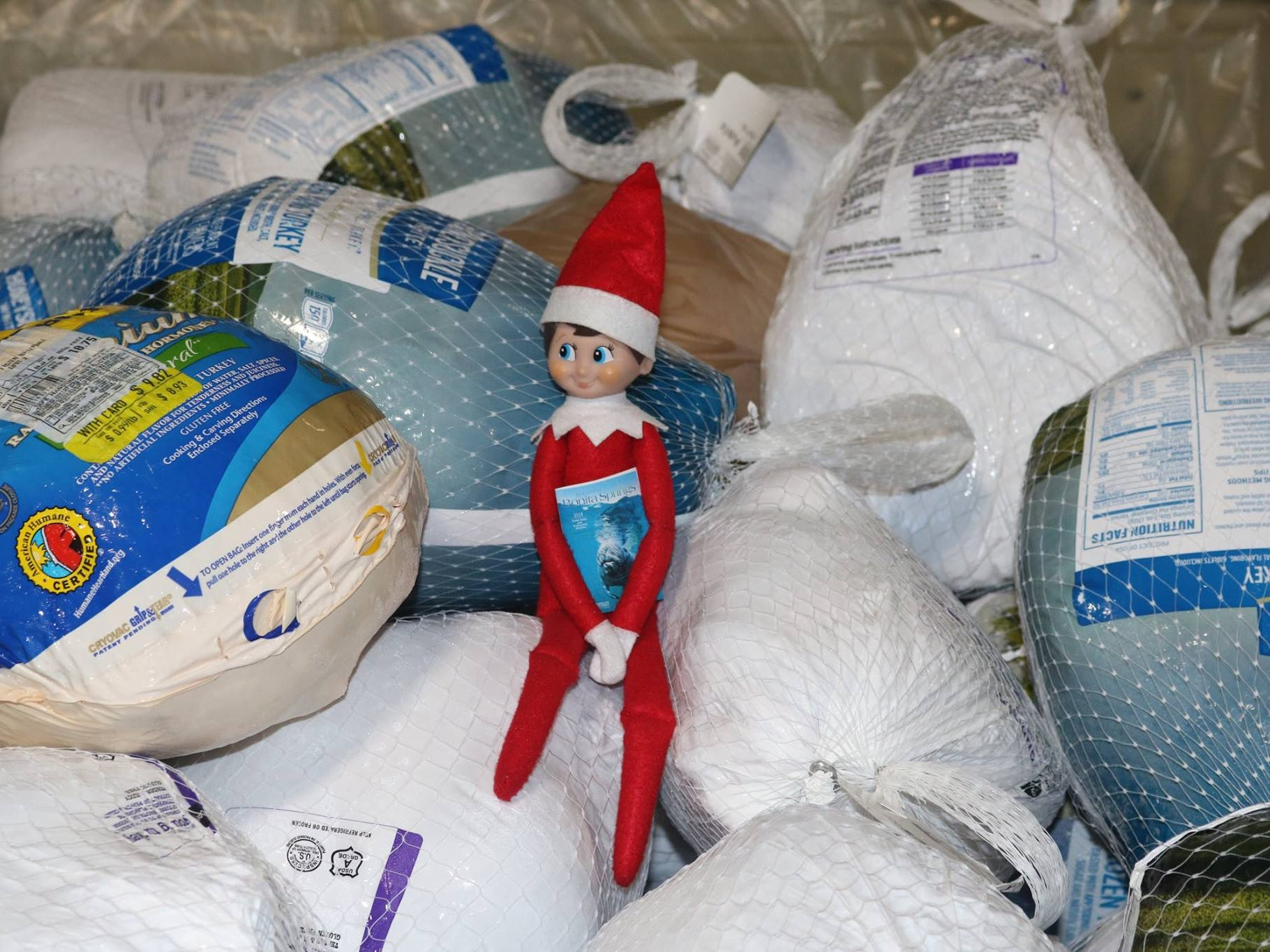 Chauncey the Elf from the Bonita Springs Area Chamber of Commerce visits member businesses every December. Here is Chauncey at the Harry Chapin Food Bank.