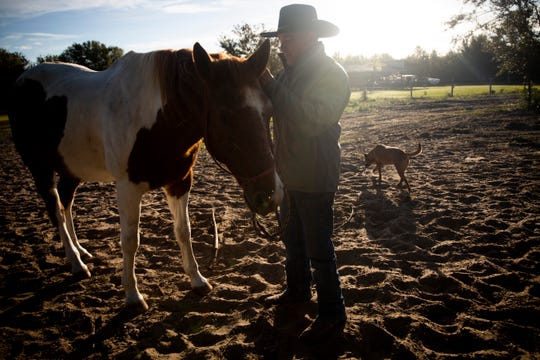 Steven DePalma tends to his horse, I'm Seeing Double, aka Sugar, with his service dog, Mia, close by on Friday, Dec. 7, 2018, at his ranch in Fort Myers. DePalma runs a program called Veteran Barn Door Project that uses equine therapy to help people, especially veterans, with PTSD and traumatic brain injuries.