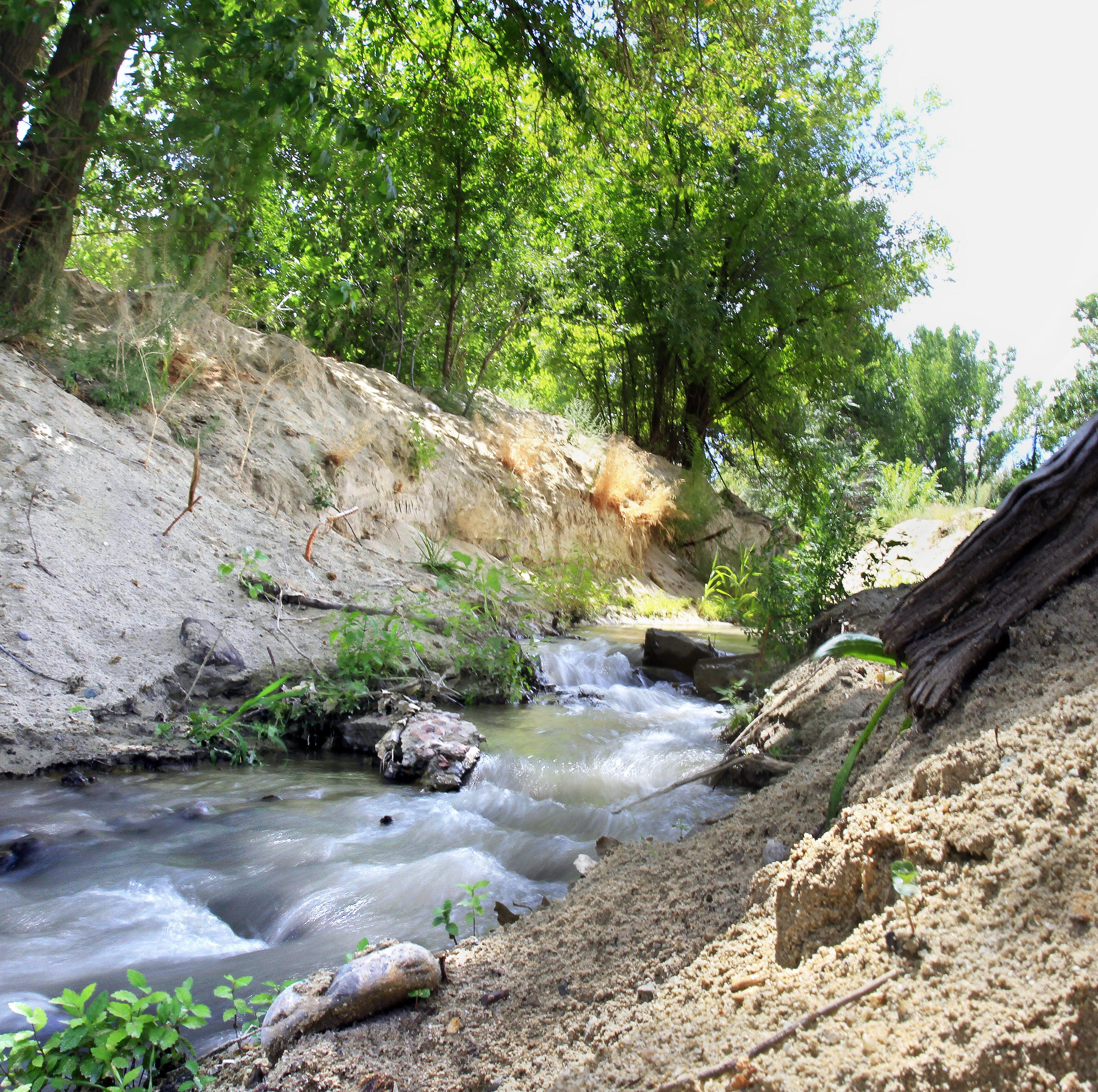EPA proposes removing ephemeral streams from Clean Water Act jurisdiction