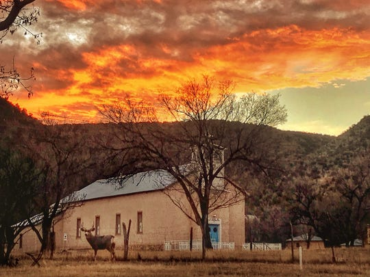 With a brilliant orange sky overhead, a mule deer buck stands outside the San Juan Church in Lincoln waiting for his girlfriend to finish a pumpkin.