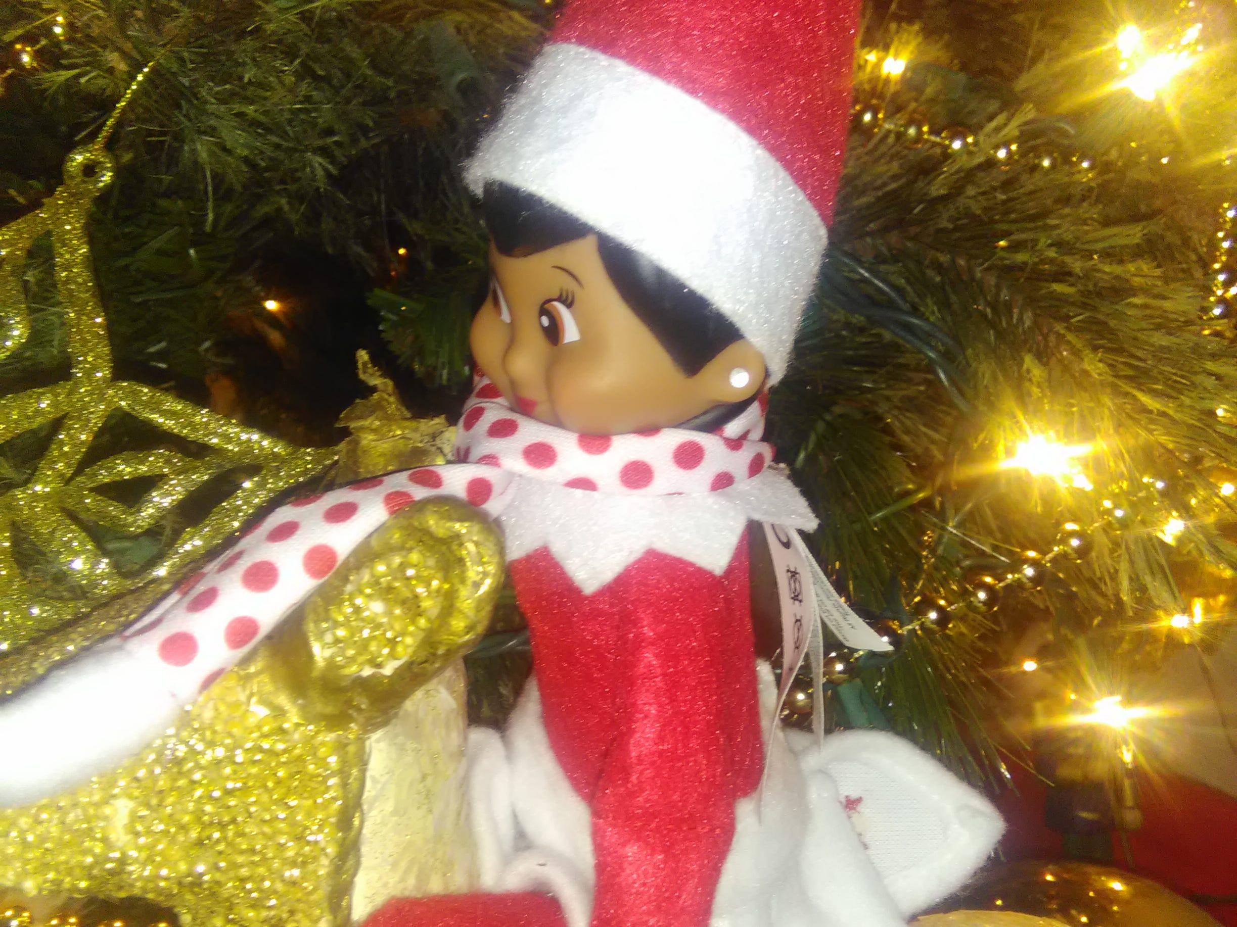This is Snowy the elf. Snowy was named by 9-year-old Savannah. The photo was taken last week in Bonita Springs.