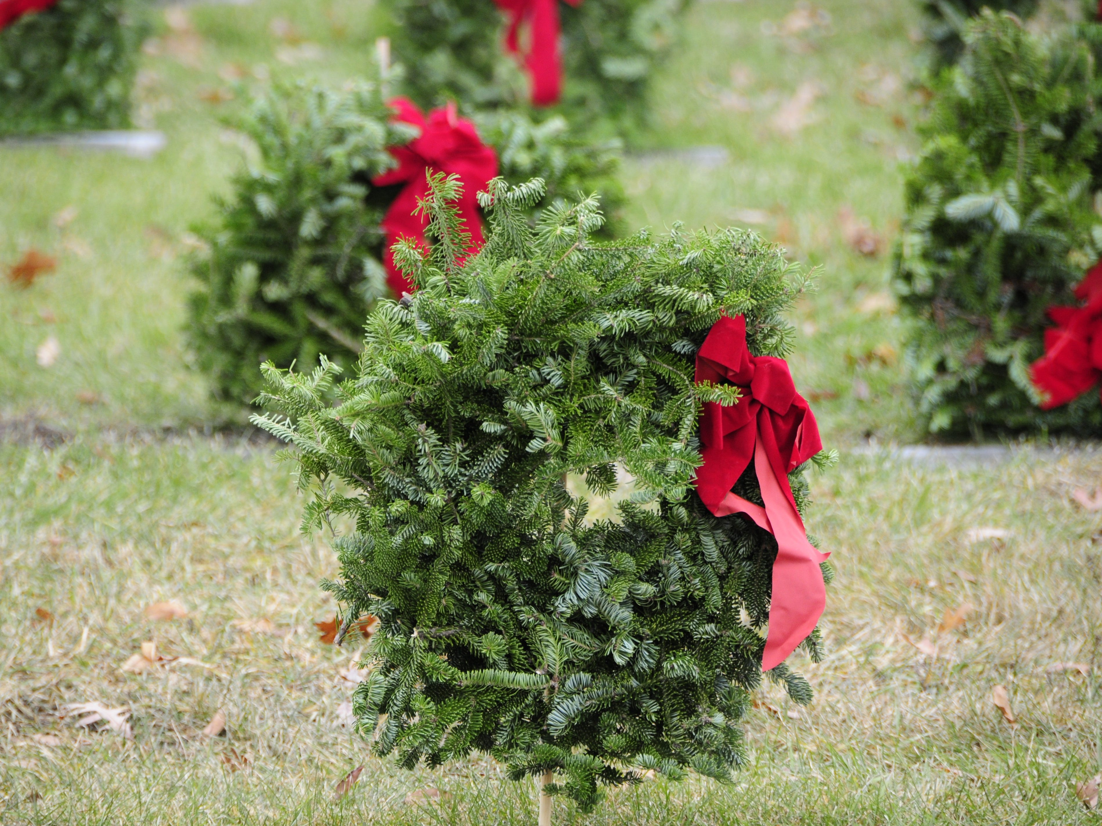 Rows of wreaths adorn graves at the Wreaths Across America event on Saturday, Dec. 15, 2018 at the St. Clair County Allied Veterans Cemetery.