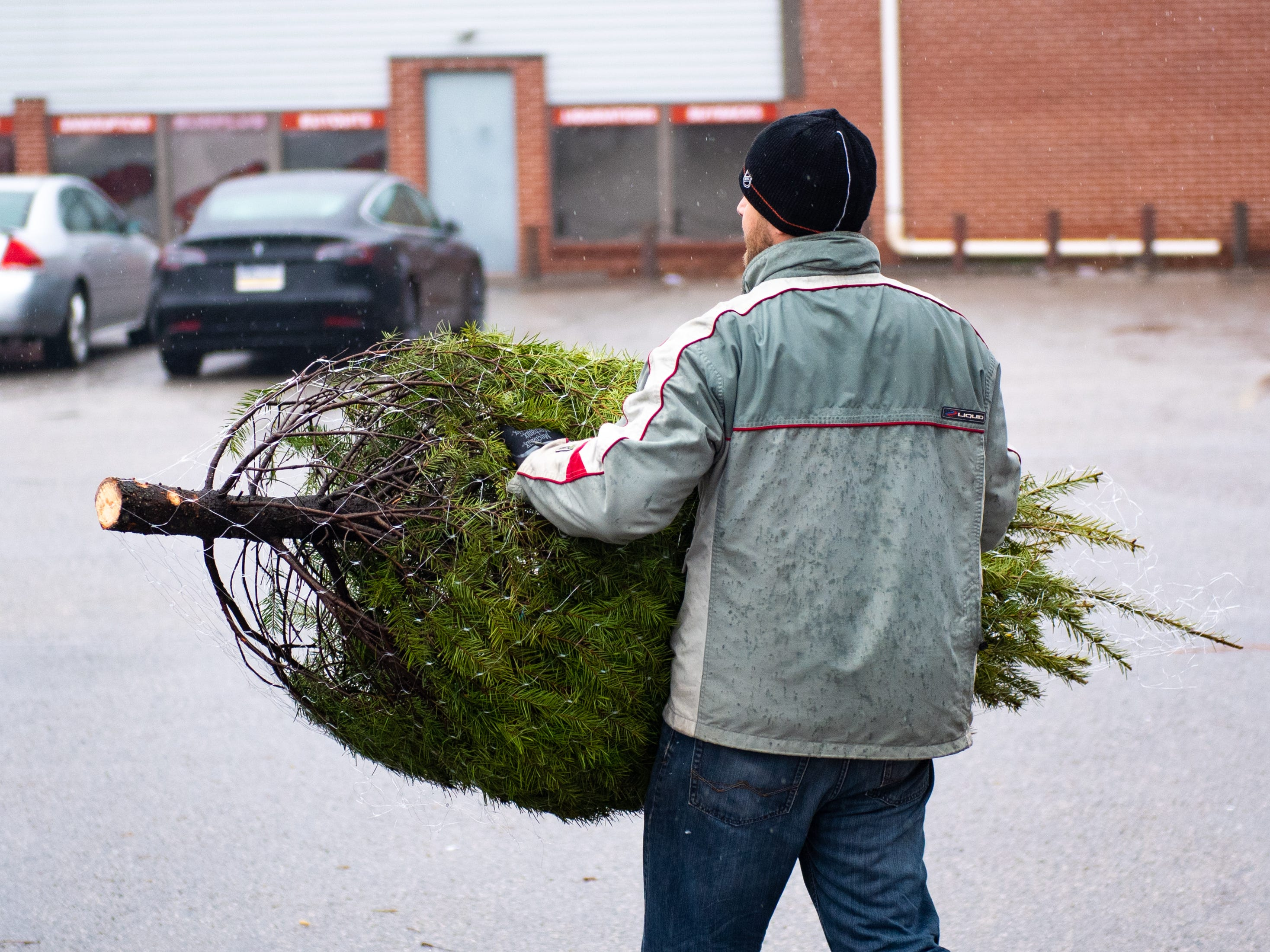 Cody Miller brings a freshly wrapped tree to a customer's car at the annual Christmas Tree Sale, Saturday, December 15, 2018.