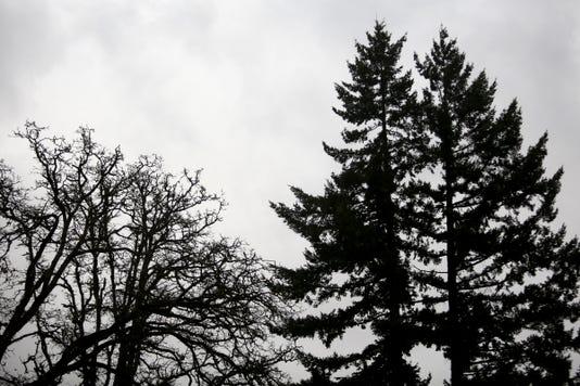 Weather Rain Ar 01