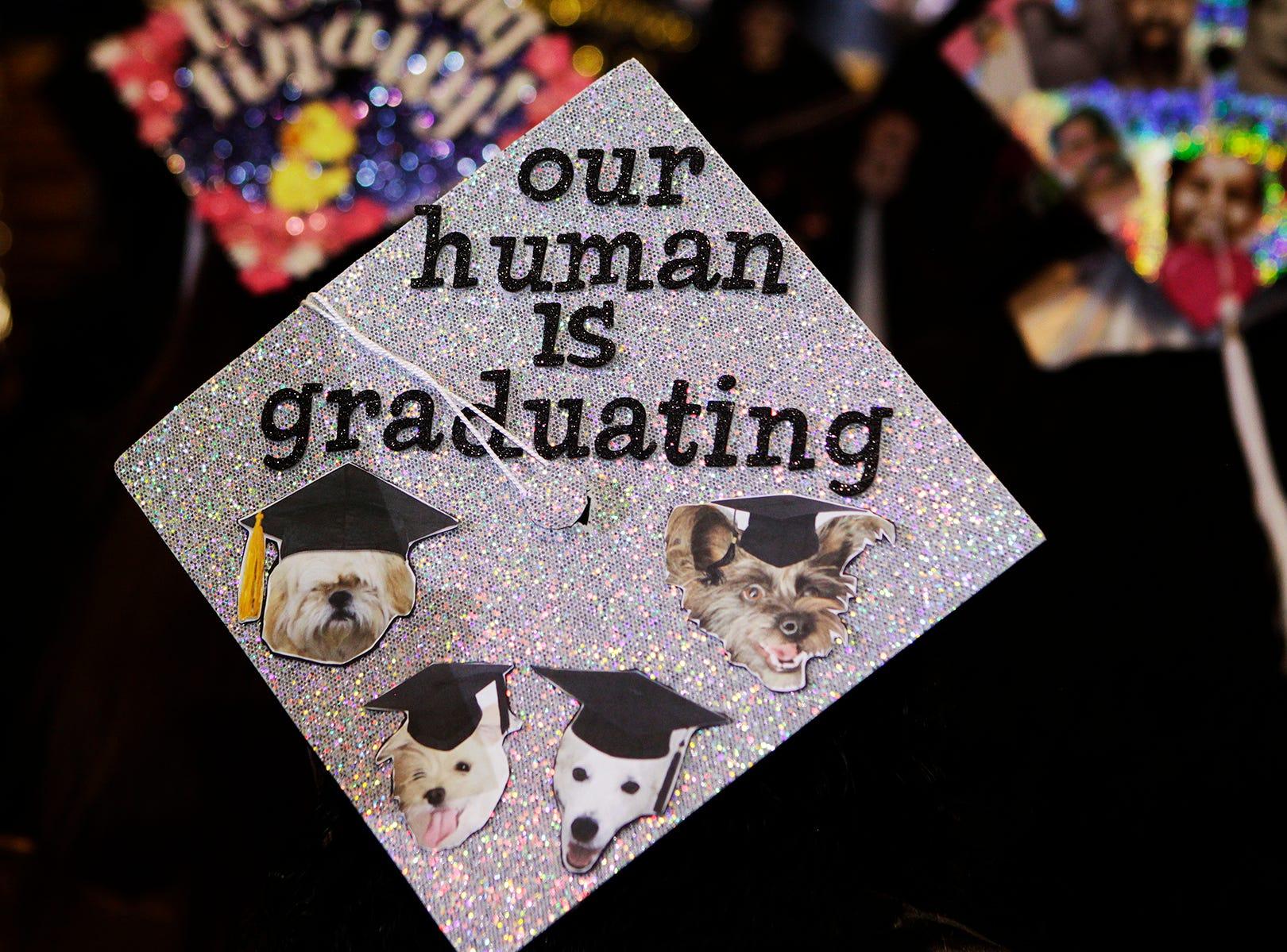 Pets adorn the cap of a graduating student.