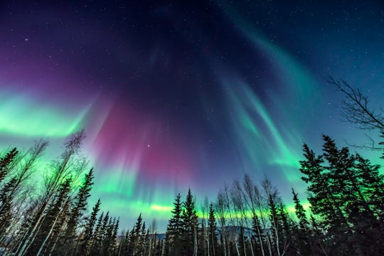 The northern lights in Alaska.