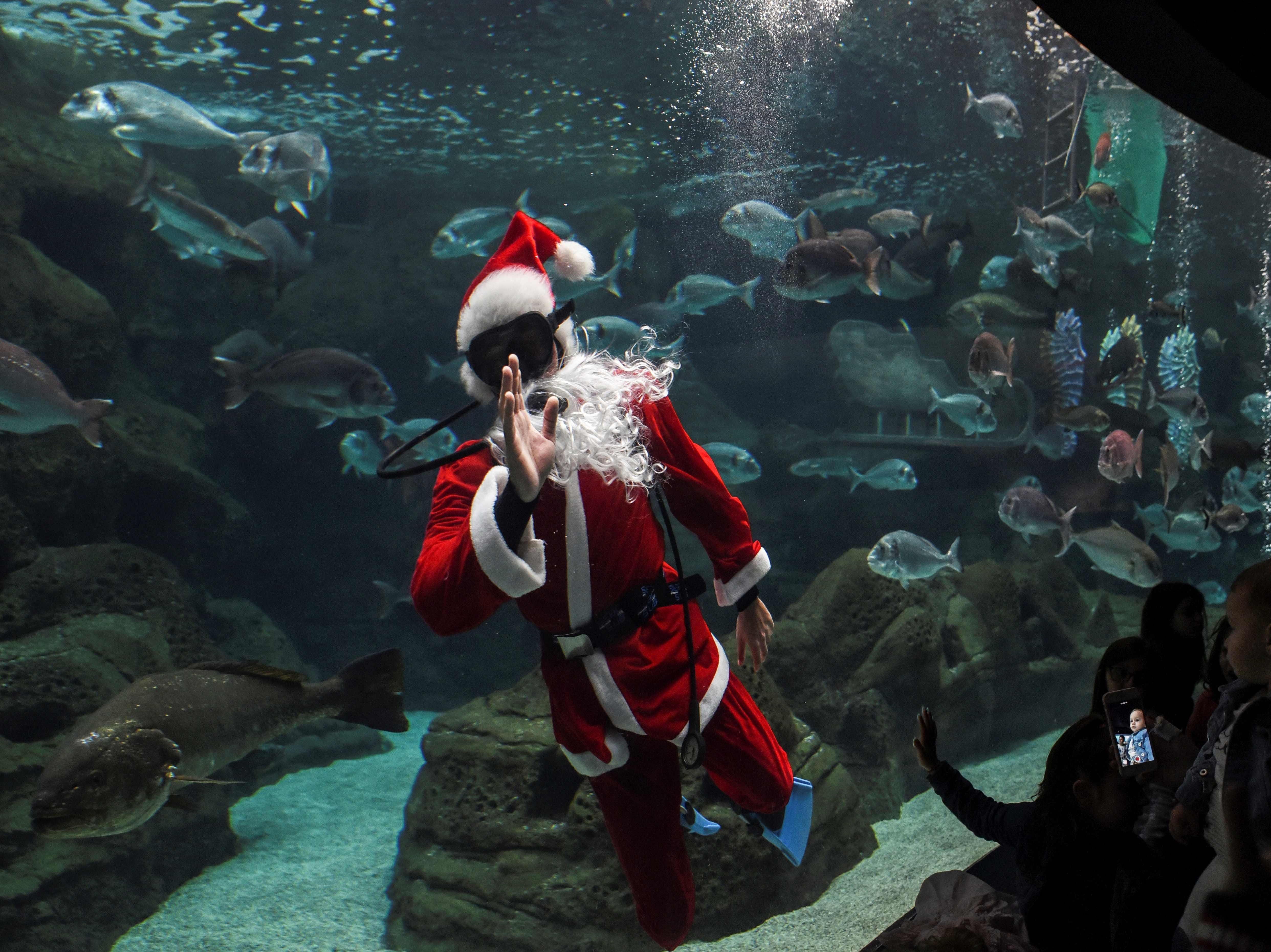 A child greets a diver dressed as Santa Claus at the Creta Aquarium in the city of Heraklion, on the Greek island of Crete, on Dec. 15, 2018.