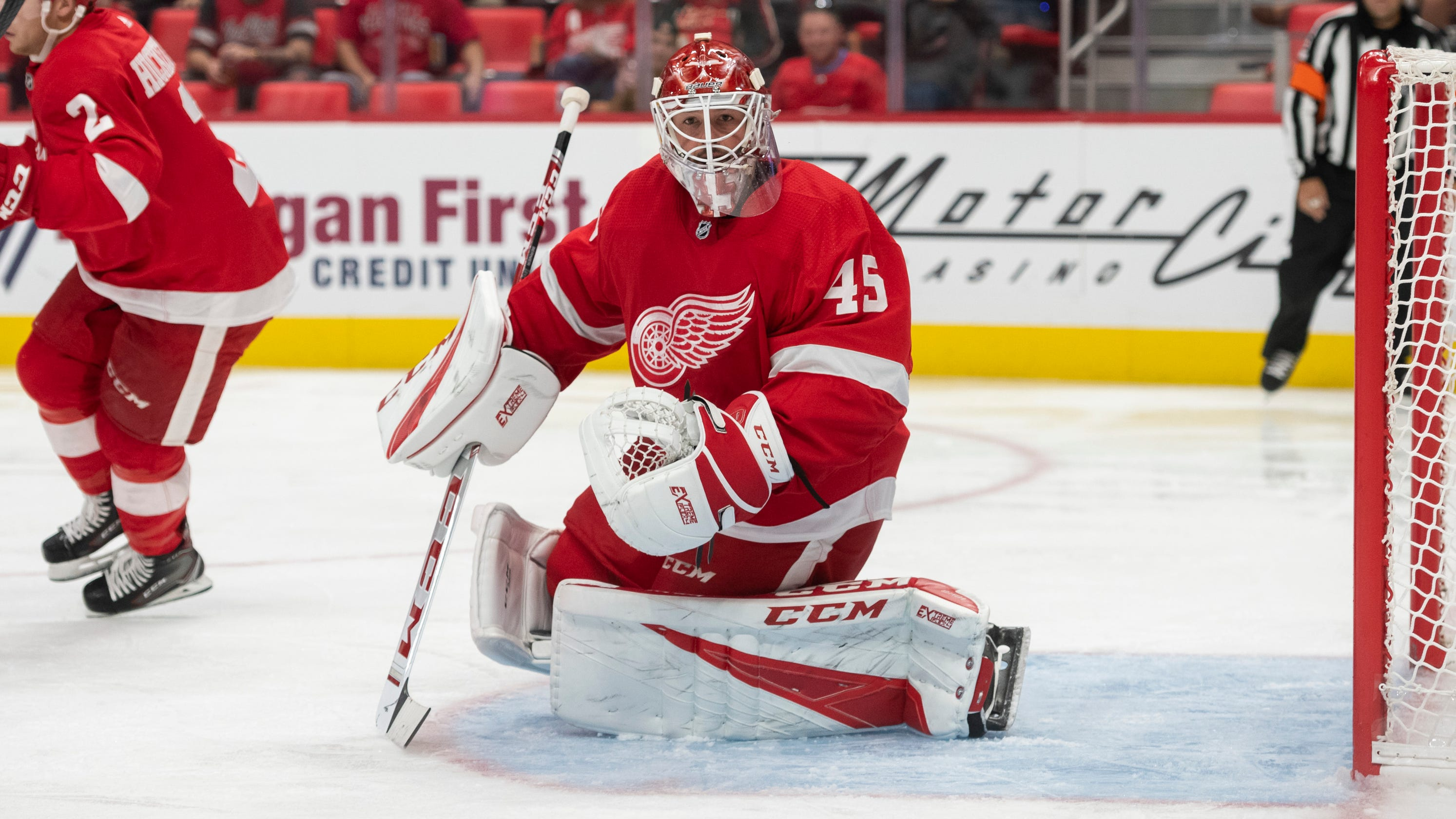 Image result for jonathan bernier red wings