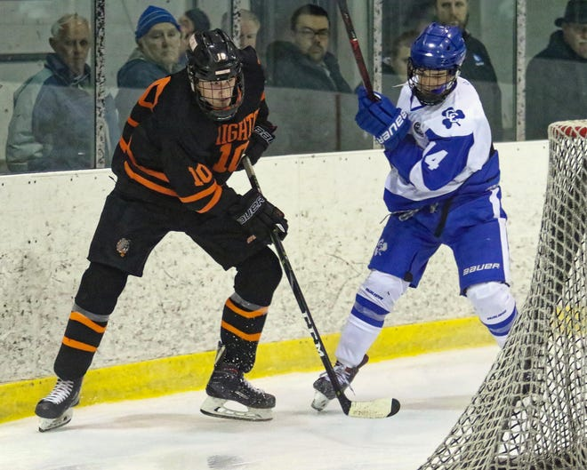 Brighton's Will Jentz (10) and Detroit Catholic Central's Brendan Hill (14) go after the puck behind the net on Saturday, Dec. 15, 2018.
