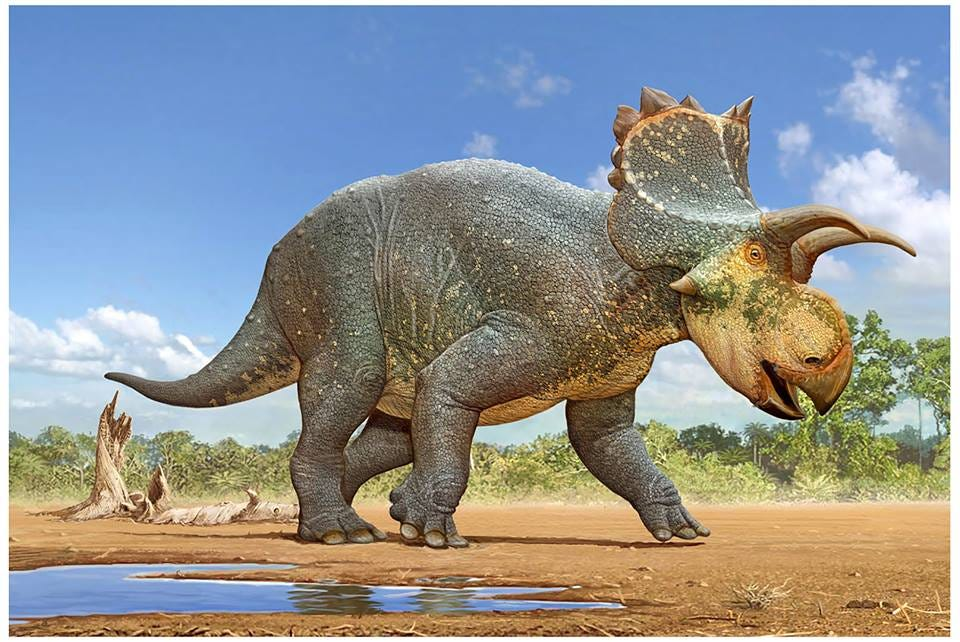 Scientists in New Mexico reveal new dinosaur species | Las Cruces Sun