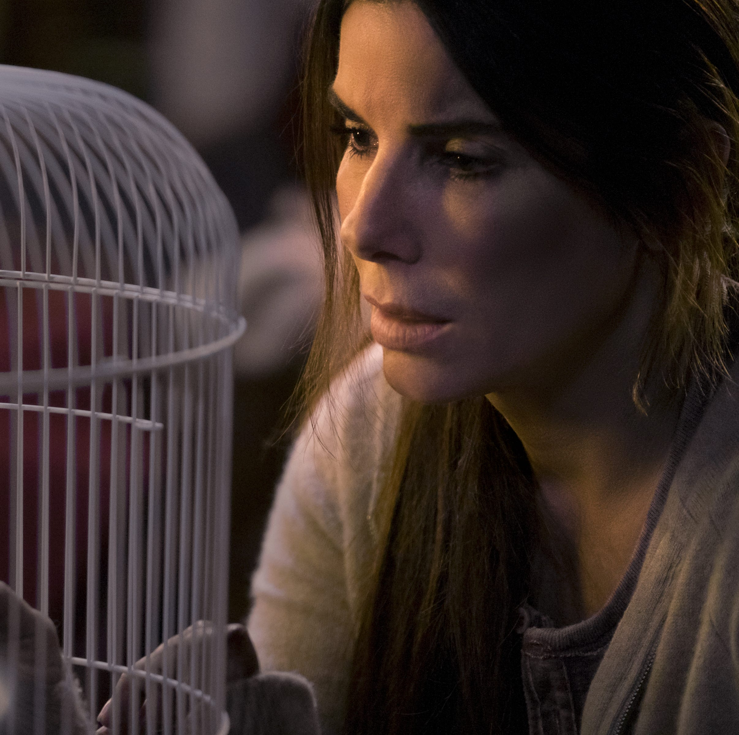 'Bird Box' review: Sandra Bullock discovers her inner Jamie Lee Curtis