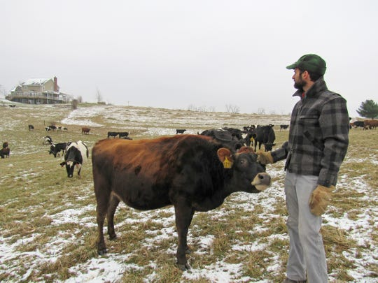 Andy Hatch, an award-winning cheesemaker and owner of Uplands Cheese Co., surveys the unencumbered view of his home from his pasture where his herd of dairy cows graze. A proposed high-powered transmission line with towers up to 175 feet tall could be part of this view under a proposal by three utility companies if the preferred route along Highway 18-151 is not selected.