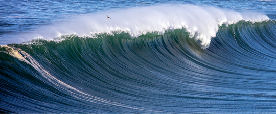 Surf at Mavericks