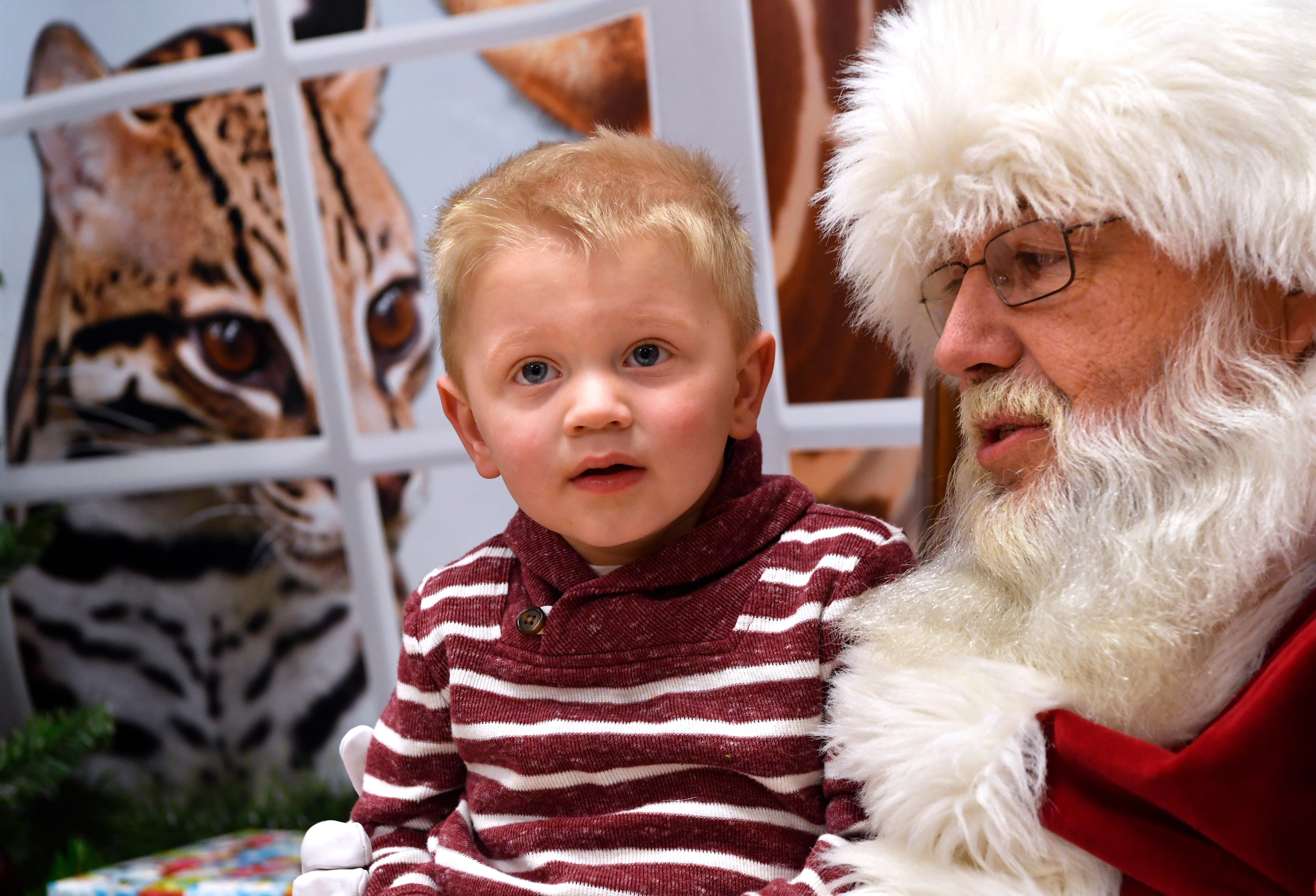 Austin Cox, 2, sits on Santa Claus' knee Dec. 8 at the Abilene Zoo. Breakfast with Santa is the zoo's annual Christmas fundraiser and was sold out both of the weekends in which it was held.