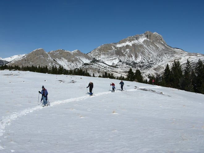 A group of snowshoe hikers makes its way along the Rocky Mountain Front with Castle Reef Behind them. Registration for the 2019 Wild Winter Adventures is now open.