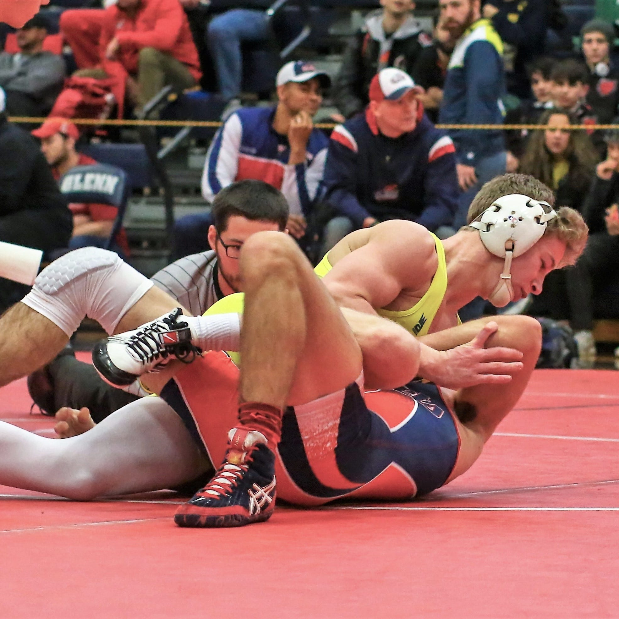 Hartland wrestlers beat strong field in Hudsonville