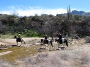 Horseback riders enjoy a mild winter day on the trails of Catalina State Park.
