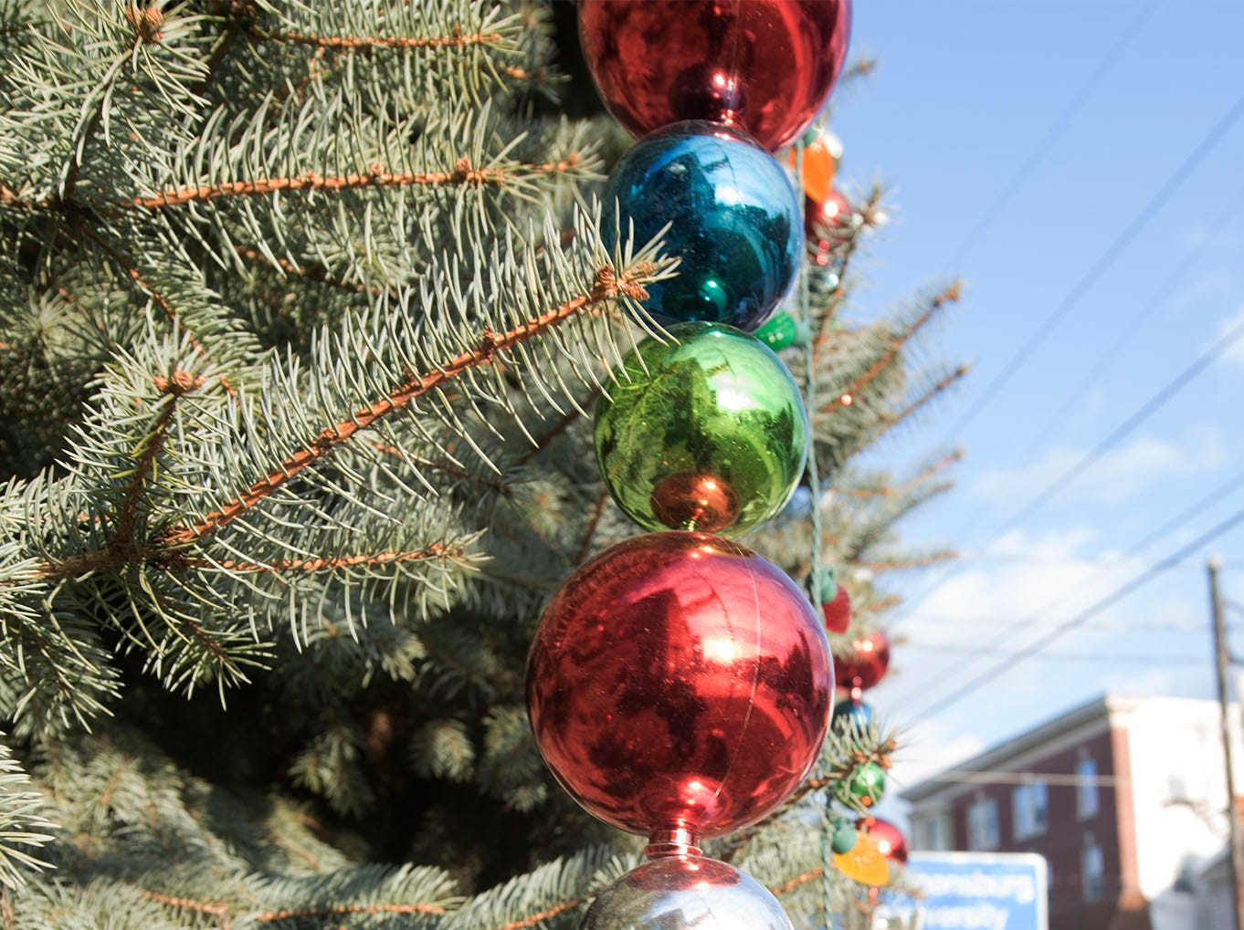 The Shippensburg Christmas tree is at the corner of Prince and East King streets.