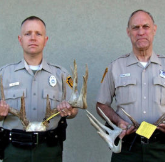 The legend of 'Buckzilla' - old set of antlers point to poacher