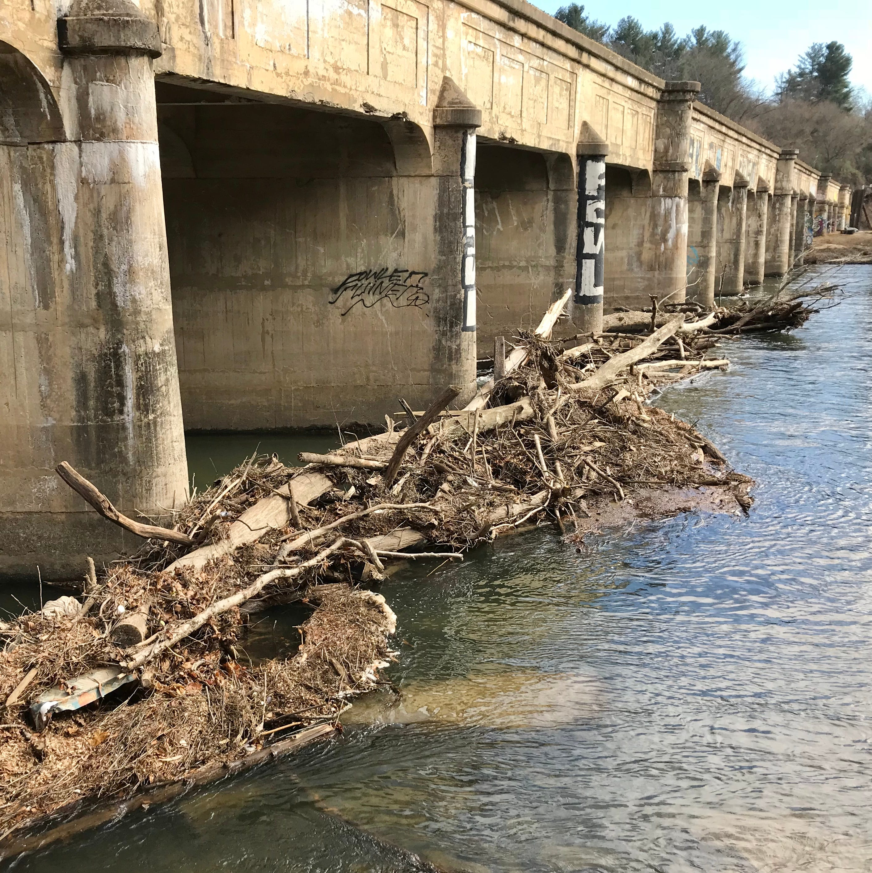 Answer Man: Who's responsible for cleaning up French Broad River logjams?