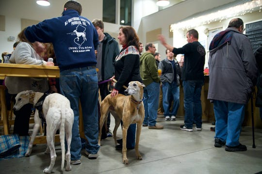 New Jersey Greyhound Adoption Program (NJGAP) will host a Meet &  Greet at Lone Eagle Brewing, 44 Stangl Road, Flemington, from 1 to 4 p.m. on Sunday, Dec. 23.