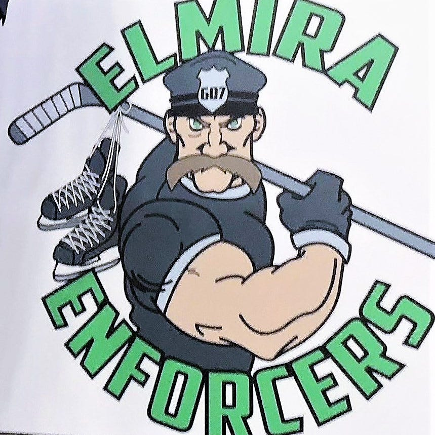 Police: Elmira Enforcers hockey players involved in Horseheads fight