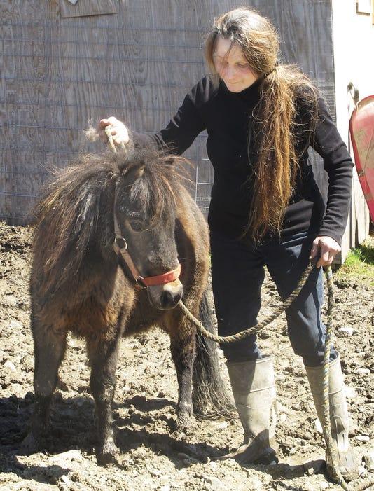 Elm 041713 Minihorse 1 Jdm