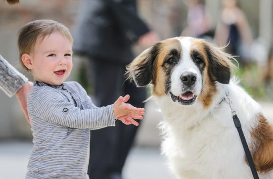 Zane Law meets a dog named Boo on Earth Day at Holliday Park in Indianapolis on Sunday, April 22, 2018.