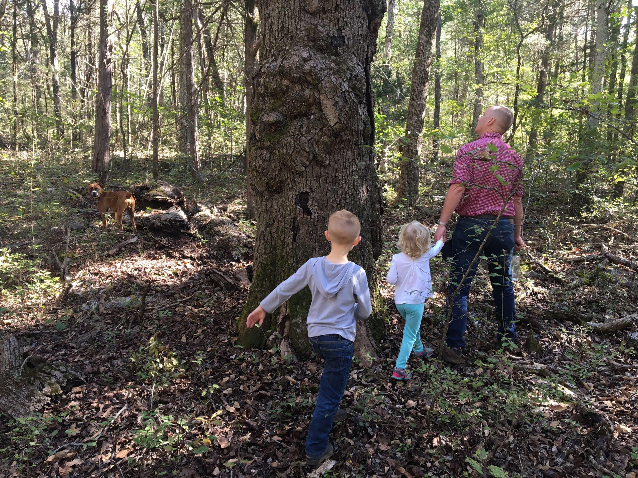 Steel Barrel brewmaster Derrick Morse takes his two children exploring on the nature trail located on the 83-acre Hop Springs property.