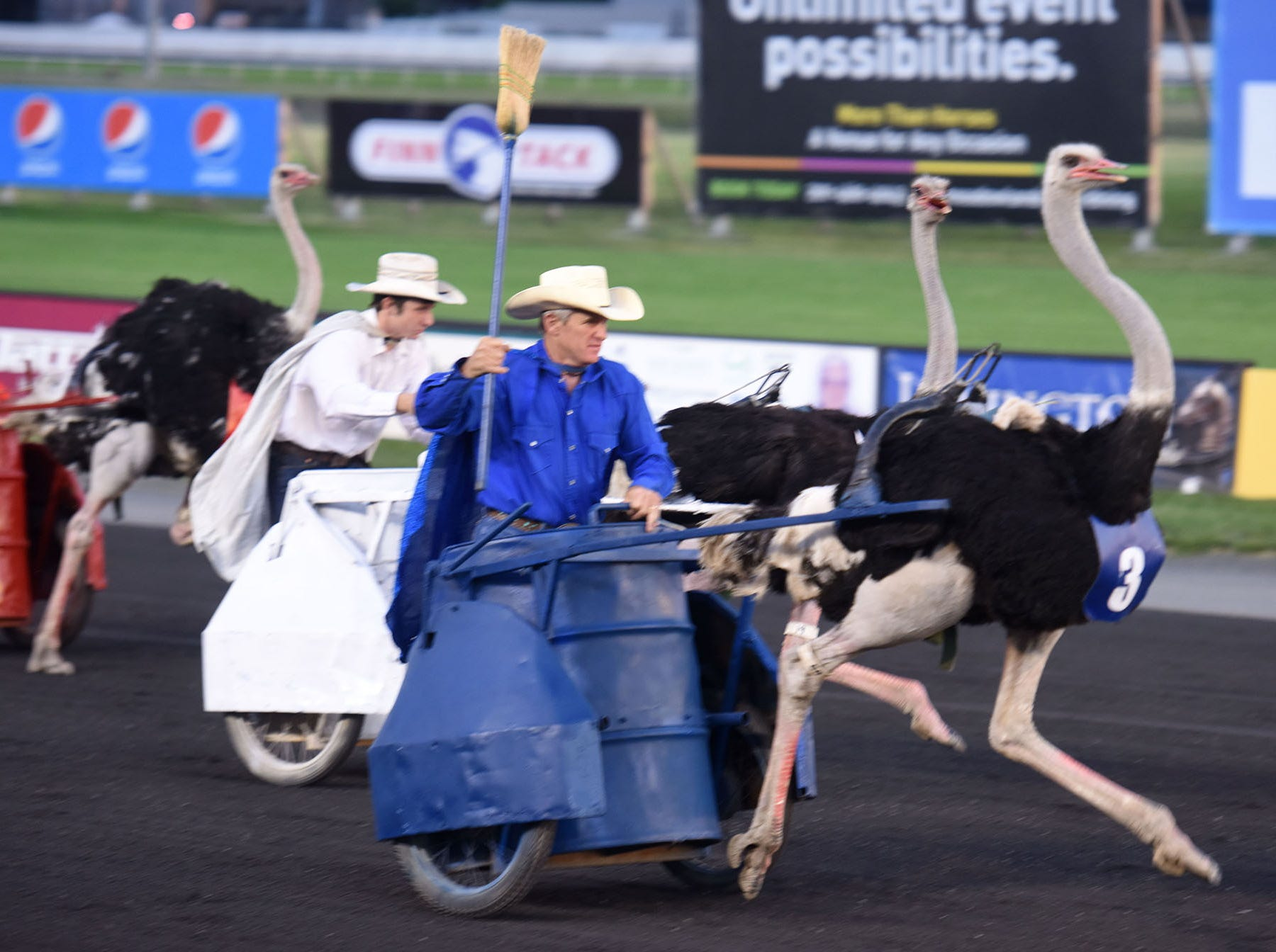 20032785A.6.16.2018.Esat Rutherford.Ostrich Derby:7th Annual Ostrich Derby at Meadowlands Racing & Entertainment