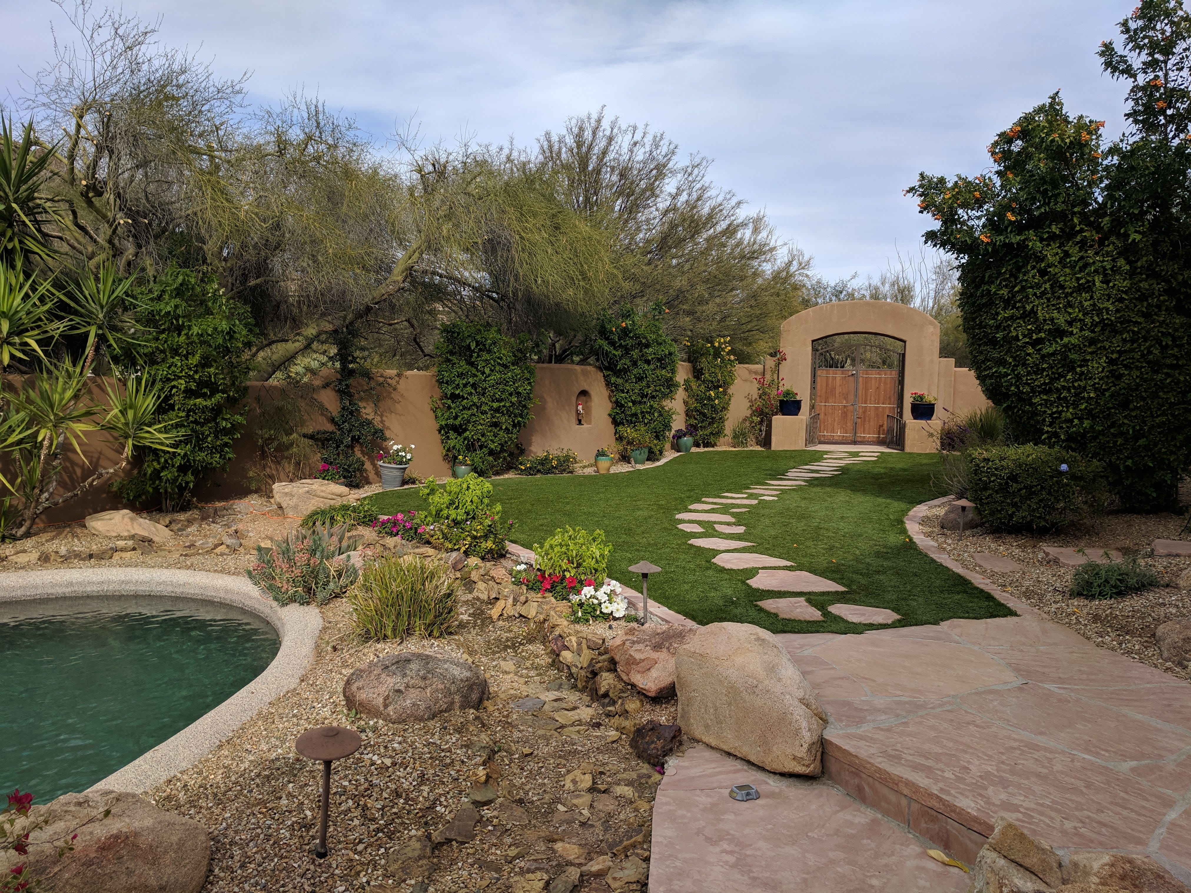 The Reaveses renovated their front yard to remove cactuses and lay artificial turf, which is more dog-friendly for Harry and Caray.