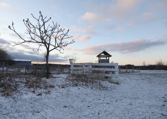 A dusting of snow covers Buckland Park.