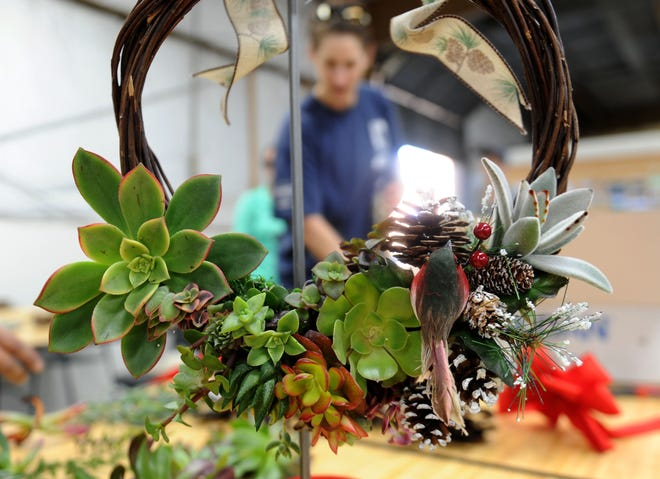 In this 2018 file photo, Robin Cushing, a volunteer at Growing Works, designed this living wreath with succulents and flowers grown at the garden. Growing Works helps the homeless and people with mental illness find jobs in horticulture.