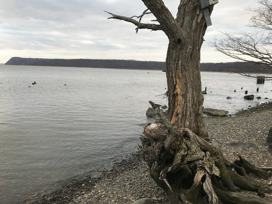 The Hudson River bank on the south side of the Piermont Pier