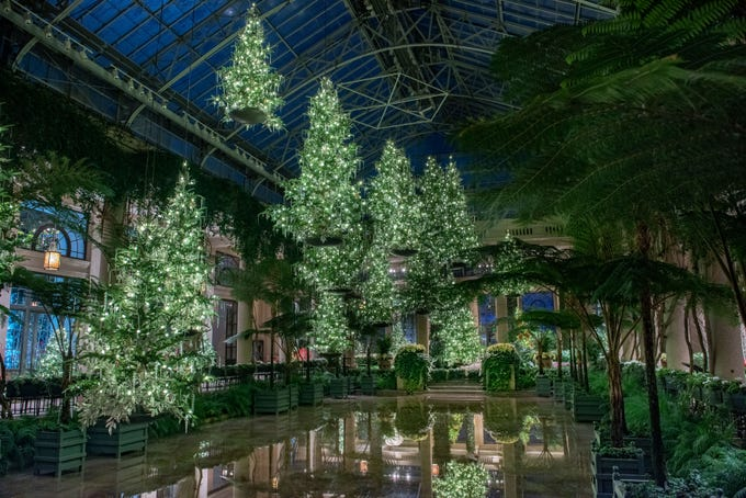 This forest of 17 floating trees glows with white lights at night at A Longwood Christmas.
