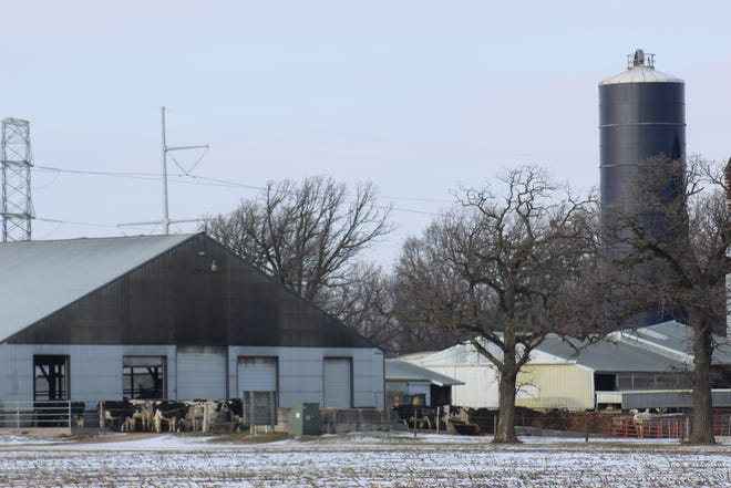 Dairy Task Force 2.0  is trying to figure out how to save dairy farmers, cheese producers and more amid hundreds of farm closures, stagnating prices and an overabundance of milk.