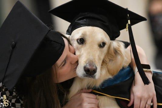 Ap Dog Diploma A Usa Ny