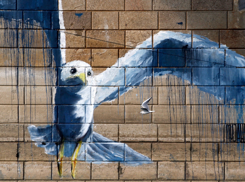 A river gull flies under the bridge by graffiti on the Sava river in Belgrade, Serbia, Oct. 23, 2018.