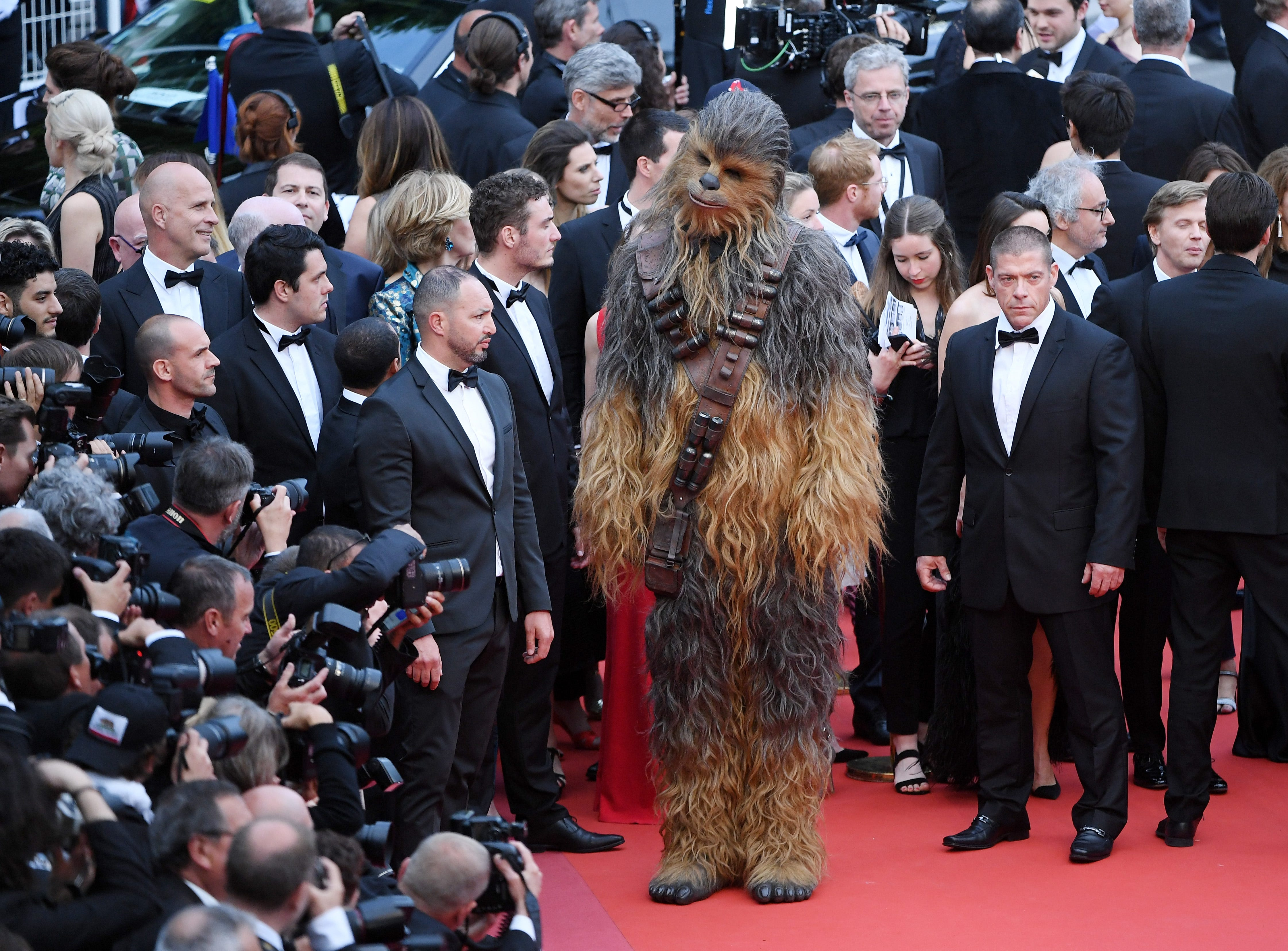 "Chewbacca attends the screening of ""Solo: A Star Wars Story"" during the 71st annual Cannes Film Festival on May 15, 2018 in Cannes, France."