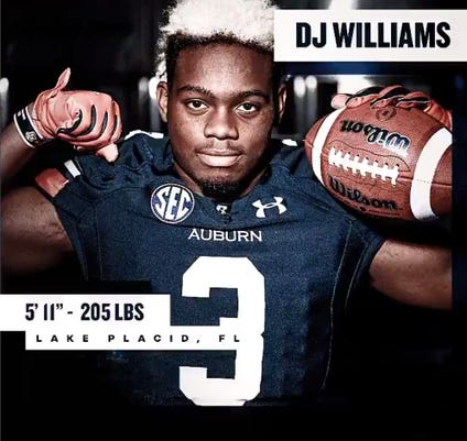 Dj Williams 2