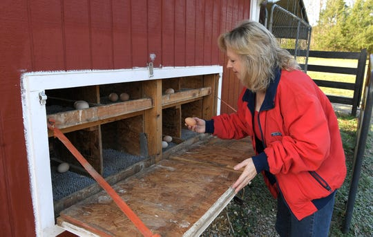 Leigh Funderburk checks on eggs on her Franklin farm.