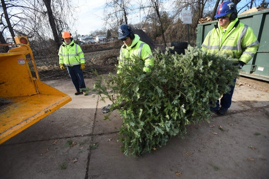DPW workers Mike Semancik (C) and his brother Steve Semancik (R) carry a Christmas tree as they demonstrate how to process, reducing wood into smaller wood chips by using a wood chipper as Anthony Swistak (L) looks on at Garfield DPW on 12/19/18.