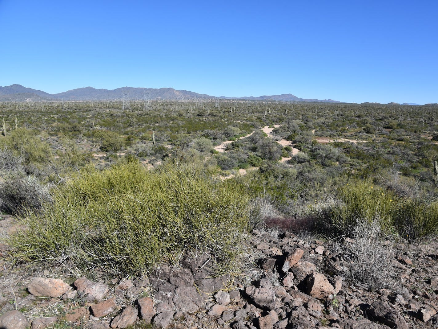 The view from Basalt Ridge Overlook in McDowell Sonoran Preserve.